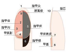 治疗3.jpg